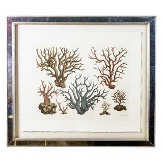 "Vintage Mirrored Framed 32"" by 28"" Colored Print With Coral Motifs by Trowbridge #2 For Sale"