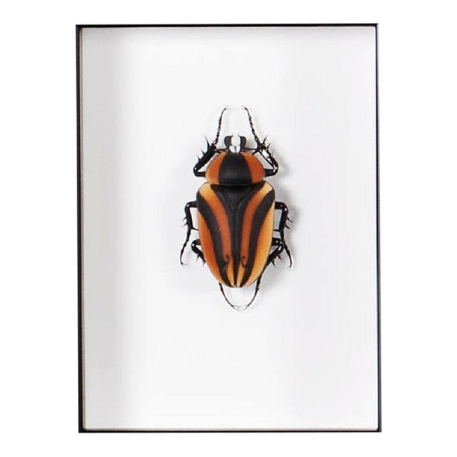 Beetle in Murano Glass by Toffolo For Sale