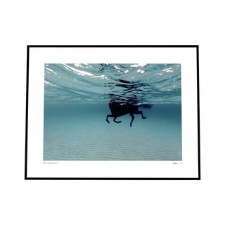 "''Carrusel Marino'' Print on Rag Paper in Black Frame Floated by Enric Gener 60"" X 40"" For Sale"