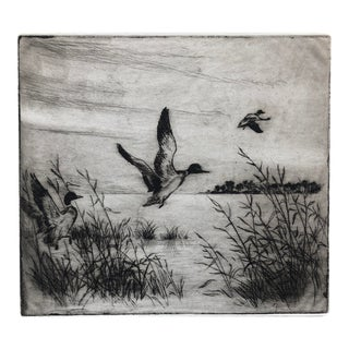 Rising Ducks Sporting Art Print by Kenneth Harris, 1950s For Sale