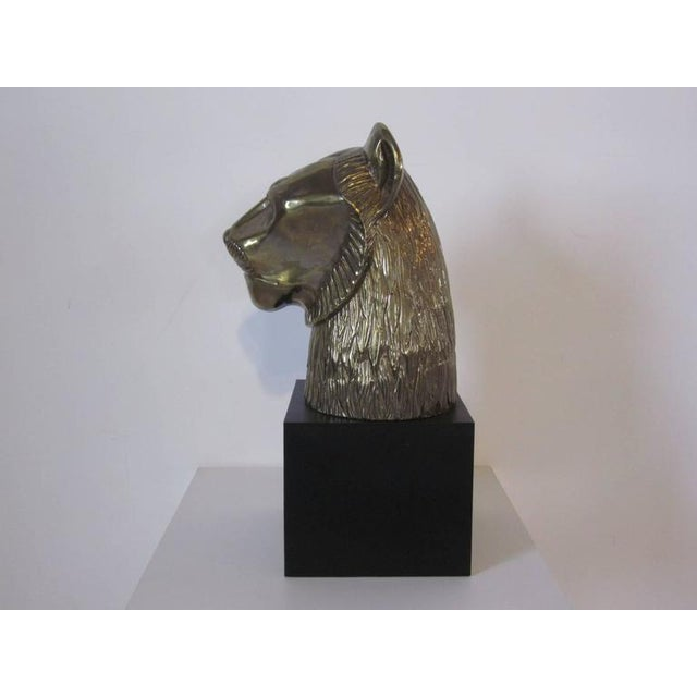 A large brass toned cat lion head sculpture in metal mounted on a satin black base with great detail and character...