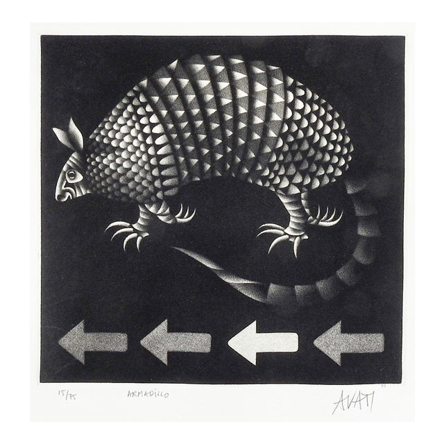 Mario Avati Armadillo Mezzotint For Sale