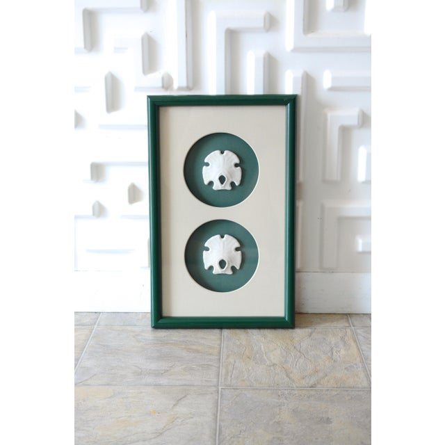 1980s Green Lacquer Framed Mexican Arrowhead Sand Dollars For Sale - Image 6 of 6