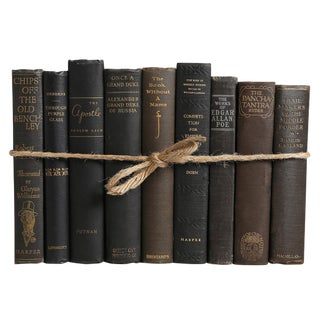 Vintage Onyx ColorPak - Decorative Books in Shades of Black