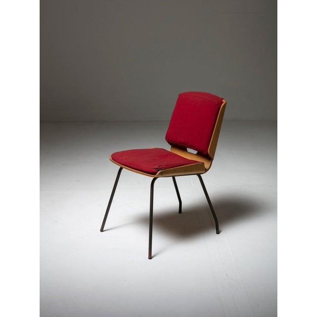 """1950s Pair of """"Lucania"""" Chairs by Giancarlo De Carlo for Arflex For Sale - Image 5 of 8"""