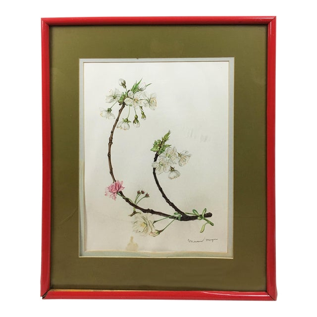 Vintage White Cherry Blossoms Goauche Painting With Scarlet Frame ...
