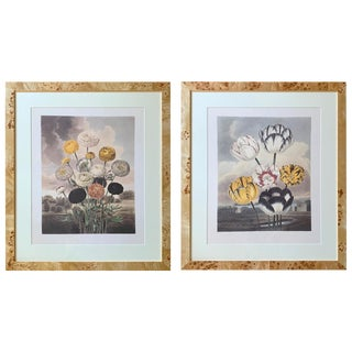 Early 20th Century Antique Framed Botanical Prints - A Pair For Sale