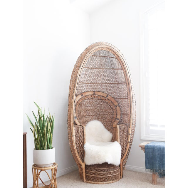 The eye-catching design of this peacock chair gives it an elegant presence no matter where it is placed. Crafted of wicker...