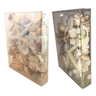 Coastal Decor Seashell Collection Lucite Cases Bookends - a Pair