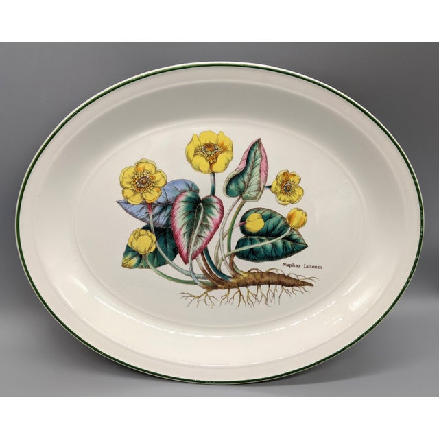 1970s English Enoch Wedgwood Tuns Botanical Nuphar Luteum Serving Platter For Sale - Image 9 of 9