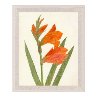 Hubbard Flower, Small: 8178 Artwork, Framed Artwork For Sale