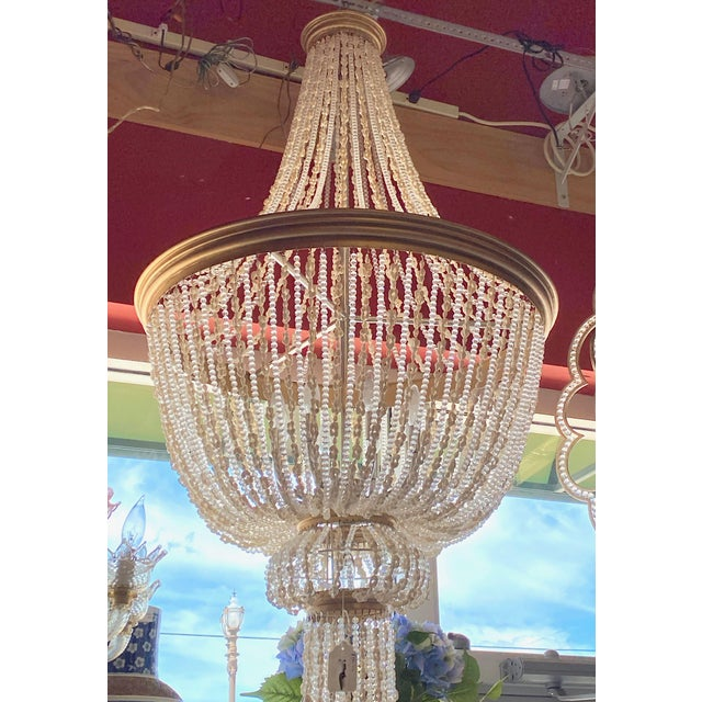 """French French 64"""" Crystals and Shells 9 Light Coastal Chandelier For Sale - Image 3 of 13"""
