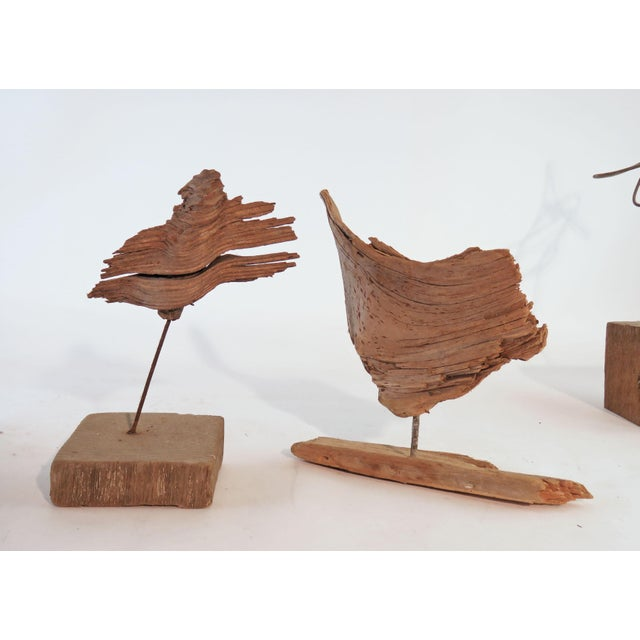 Collection of Abstract Driftwood Sculptures, Gloucester, Ma, Circa 1960s-1970s - Set of 9 For Sale - Image 9 of 13