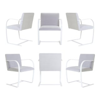 Brno Flat-Bar Chairs in Dove Velvet, Lunar Gloss Frame - Set of 6