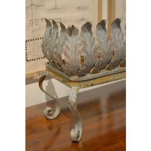 Beautiful acanthus leaf iron planter from France. A unique piece with elegant timeless design!