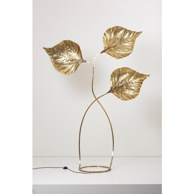 Very elegant and huge three rhubarb leaves floor lamp by the Italian designer Tommaso Barbi. The lamp is made of brass and...