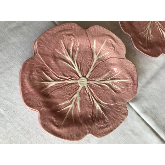 Boho Chic Majolica Pink Cabbage Leaf Dinner Plates - Set of 10 For Sale - Image 3 of 8