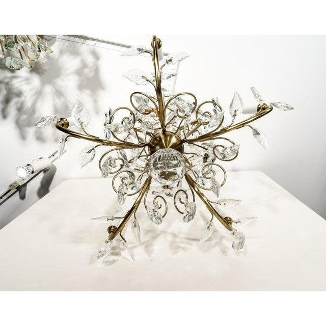 Louis XV Style Crystal and Brass Chandelier For Sale - Image 4 of 11