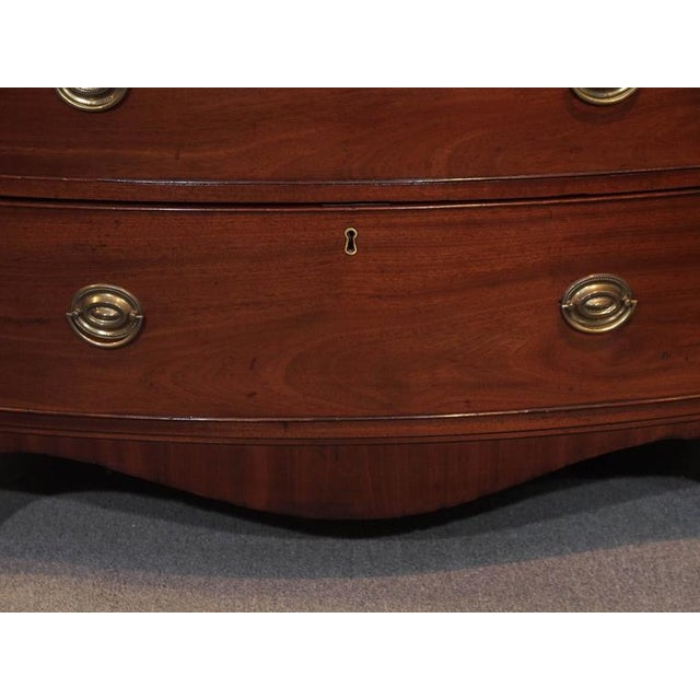 Early 19th Century Antique English Regency Mahogany Bow Front Chest For Sale - Image 5 of 8