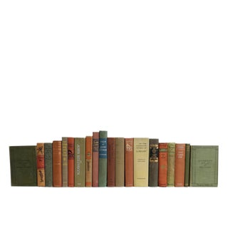 Canyon Sage Classics : Set of Twenty Decorative Books For Sale