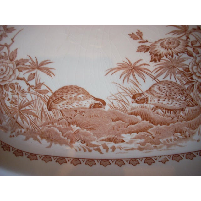 ironstone made in England Furnivals Quail 1913 pattern sepia tone on white; a classic traditional design; a wonderful...