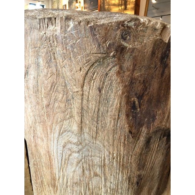 Mid 20th Century 20th Century Organic Modern Tree Trunk Chop Block For Sale - Image 5 of 8