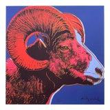 "Image of Andy Warhol Vintage 1986 Rare Lmtd Edtn Endangered Species Large Fine Art Lithograph Print "" Bighorn Ram "" 1983 For Sale"