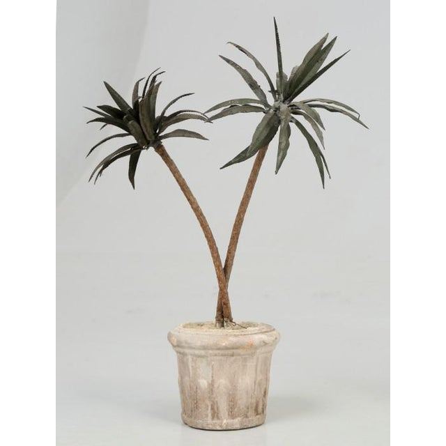 French Metal Palm Trees in Clay Pots For Sale In Chicago - Image 6 of 13