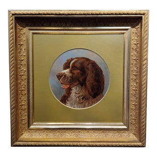 Alfred Richardson Barber - 1883 Portrait of an English Springer - Oil Painting For Sale