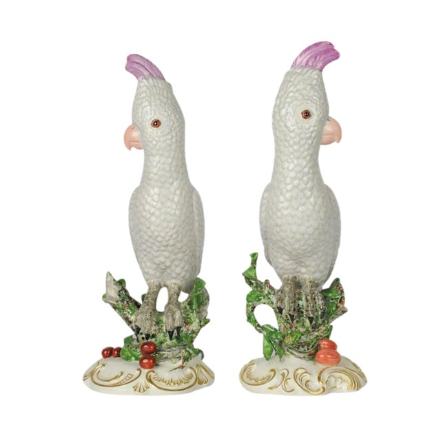 2 Vintage Nymphenburg Porcelain Cockatoo Bird Parrot Figurines 12 5