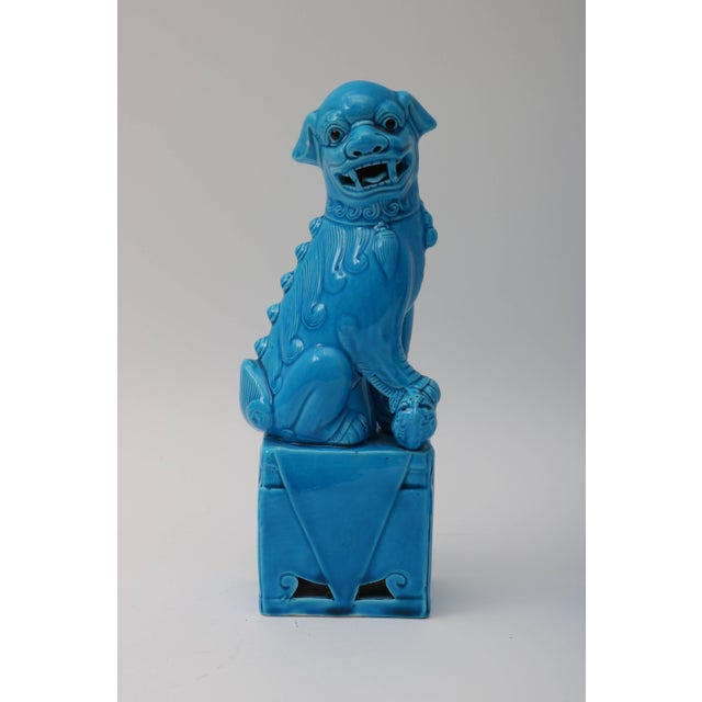This stylish pair of 1920s Chinese, glazed, peking-blue, male foo dogs will make the perfect accessory to your Hollywood...