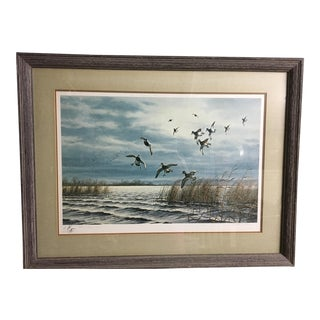 Framed Waterfowl & Landscape Artwork For Sale