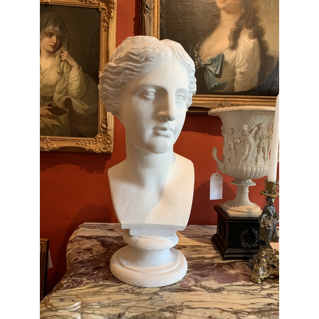 Neoclassical Style Large Plaster Bust of Aphrodite For Sale In Los Angeles - Image 6 of 11