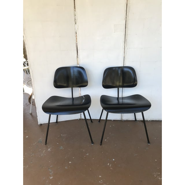 Chairs have oak heat-molded plywood seats and backs with black metal frames with metal cap feet. They have rubber round...