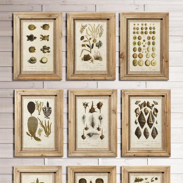 Framed Antibes Prints - Set of 9 For Sale - Image 4 of 5