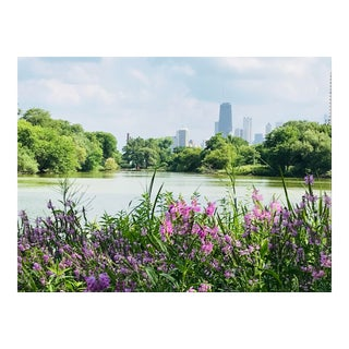 Photograph of Chicago From North Pond by Josh Moulton