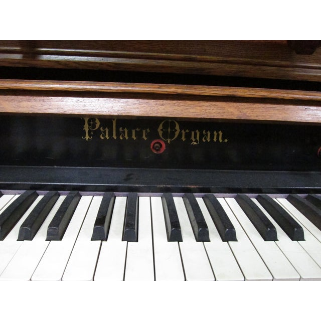 Loring & Blake Palace Organ For Sale - Image 10 of 10