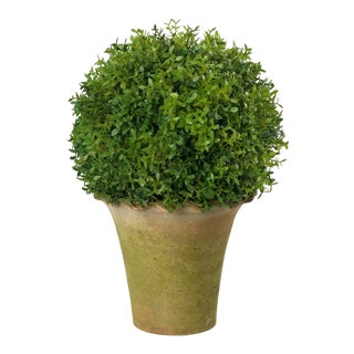 Diane James for Chairish Faux Tea Leaf Topiary in Pie-Crust Pot For Sale