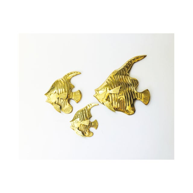 A set of 3 shiny gold brass angel fish wall hangings. Each fish has a hole on the back with a hoop, ready to hang. Each...