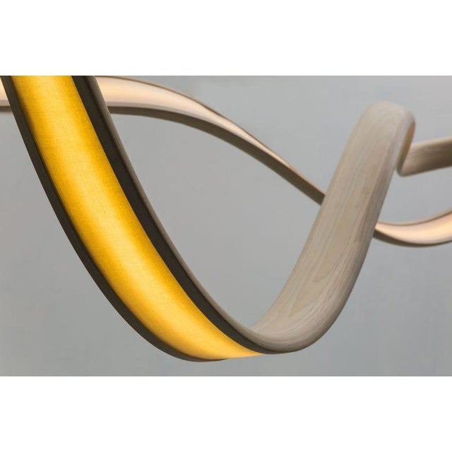 John Procario John Procario, Freeform Series Light Sculpture II, USA, 2017 For Sale - Image 4 of 6