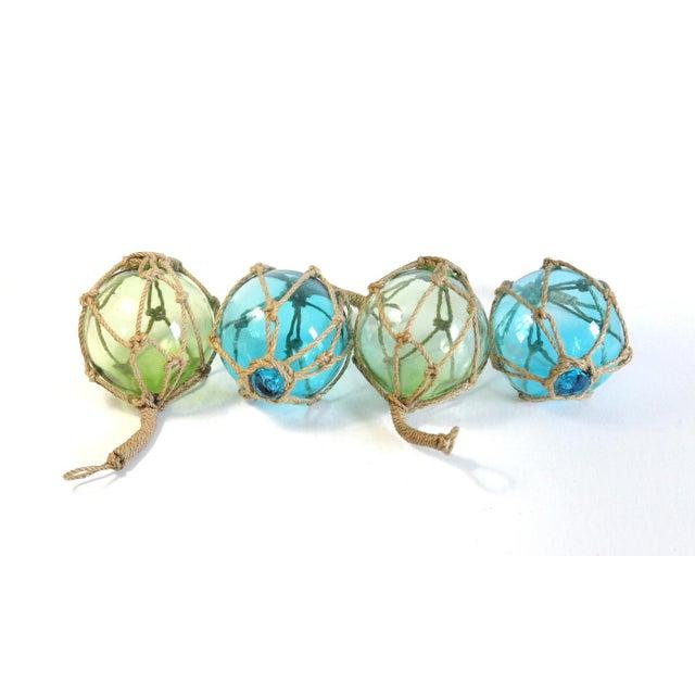 Glass Fishing Floats - Set of 4 - Image 3 of 5