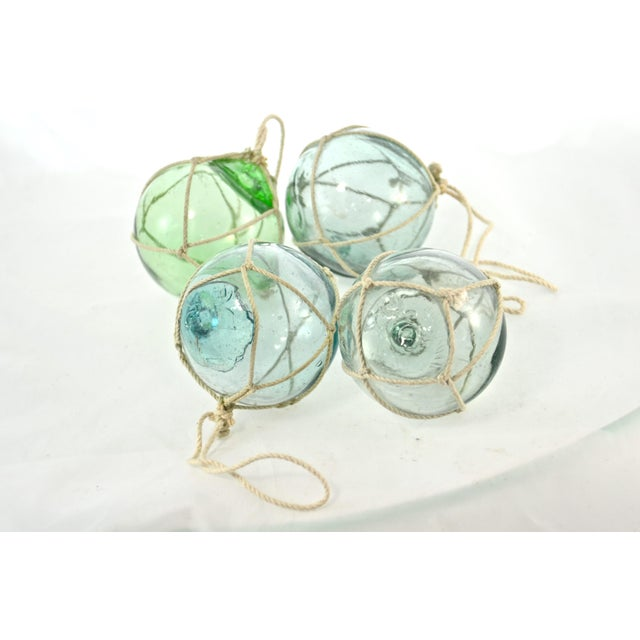 Aqua Japanese Blown Glass Net Float Ornaments - Set of 4 - Image 5 of 5