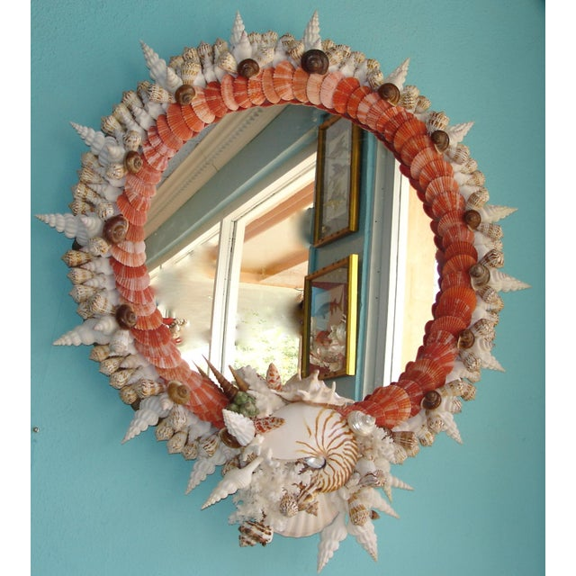 An original creation by Florida coquillage artist, this shelled mirror highlights the rare, natural coral red pectin...