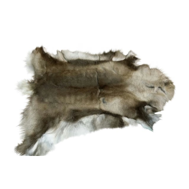 "Reindeer Hide Rug Dark - 3'7""x4' - Image 1 of 2"