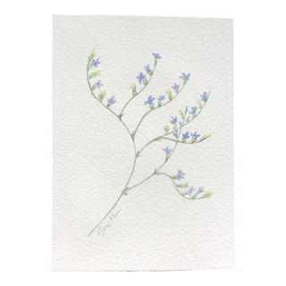 "Nancy Smith Original Botanical Miniature Watercolor ""Sea Lavender"" For Sale"