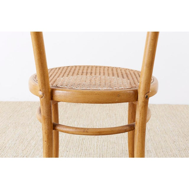 Beech Pair of J. And J. Kohn Austrian Bentwood and Cane Chairs For Sale - Image 7 of 13