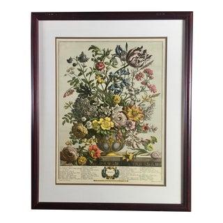 """Spring"" Botanical Print in Frame For Sale"