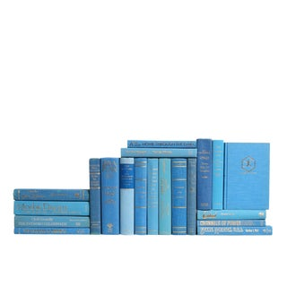 Retro Readings in Turquoise - Set of Twenty Decorative Books For Sale