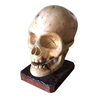 Gothic Handcarved Wooden Skull Anatomical Sculpture For Sale