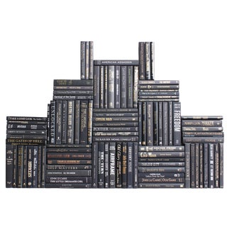 Modern Onyx Book Wall Decorative Black Books With Blending Accents - 100